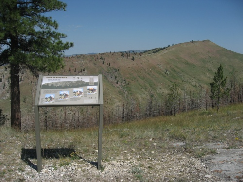 The view from the ridge opposite of where the smokejumpers were killed. Click on the photo to read the interpretive sign showing the timeline of events at Mann Gulch.
