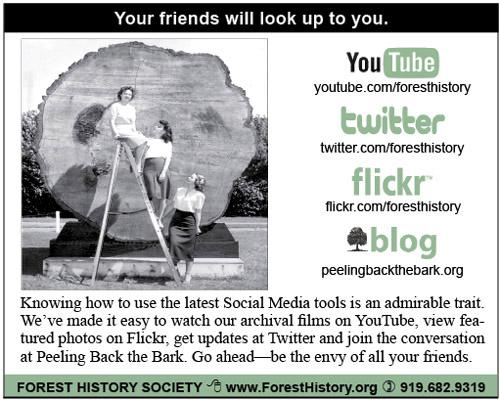 Looking Up Social Media Ad