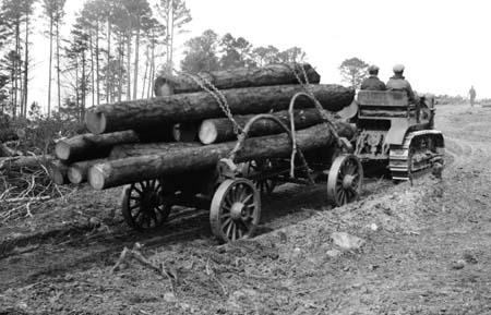 Caterpillar Tractor hauling logs near Columbia, South Carolina, June 1929