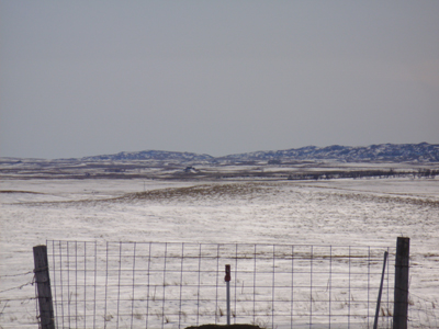 White Butte (highest point in North Dakota) near Amidon. Note the shelterbelts on the right side of the photo. Such mature trees are a good example of existing standing wood sources away from houses in southwestern North Dakota. (Courtesy of Keri Youngstrand)