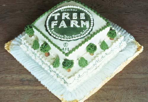 Tree Farm cake