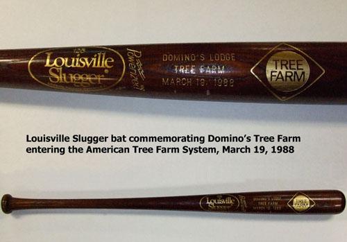 Tree Farm baseball bat