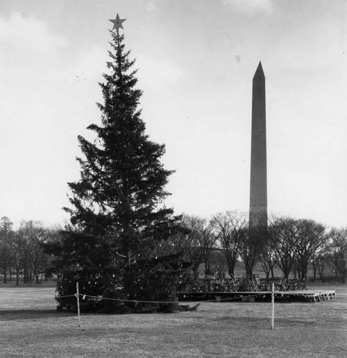 1923 National Christmas Tree