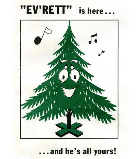 Ev'rett the friendly evergreen