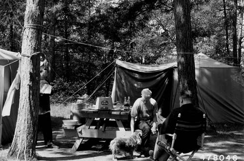 Chippewa National Forest camping, 1953.