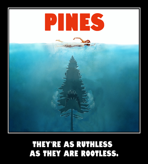 Pines movie poster.