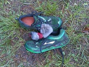 cradle_shoes
