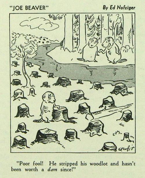 Joe Beaver cartoon