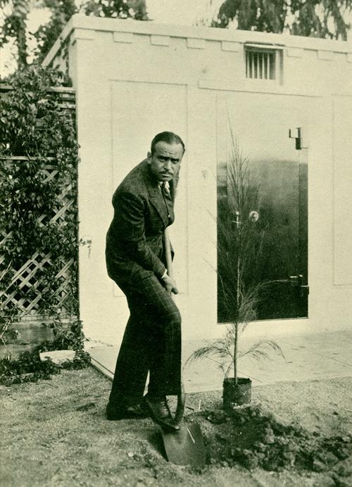 Douglas Fairbanks plants a tree.