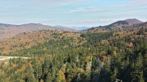 The DAR Jubilee Forest, as seen from Devil's Courthouse, Oct. 14, 2016