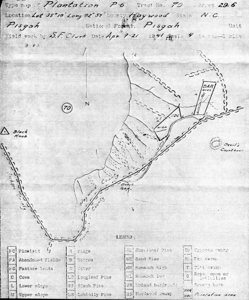 US Forest Service map of the area showing the two memorial plantations, dated April 21, 1941. Click the map to see it enlarged.