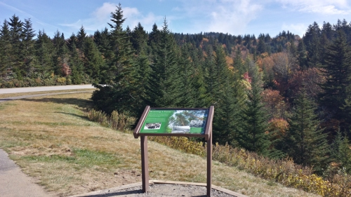 The new sign, with the DAR forest in the background.